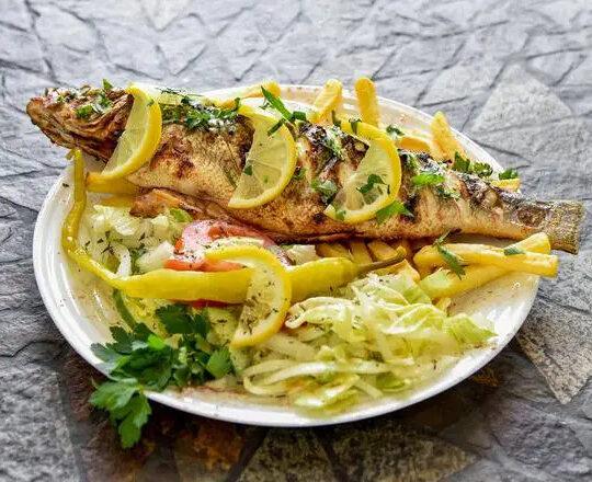 Sea Bass (Fish)